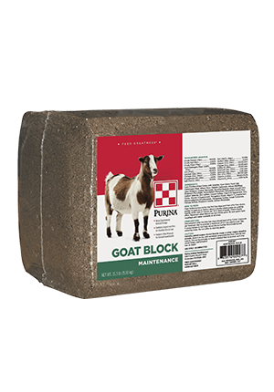 Product_Goat_Purina_Goat-Block