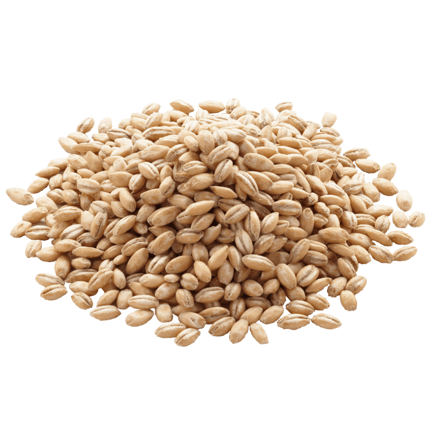 smaller_barley