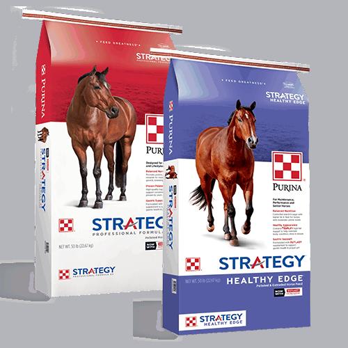strategyedgeGX