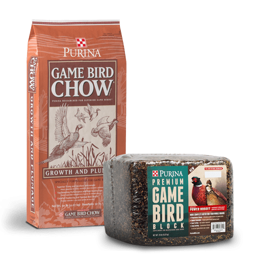 Product_Poultry_Purina_Game-Bird-Chow copy