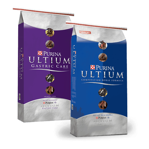 Products_Horse_Ultium-Gastric-Care copy